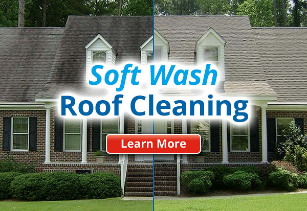 Soft Wash Low Pressure Roof Cleaning Savannah GA